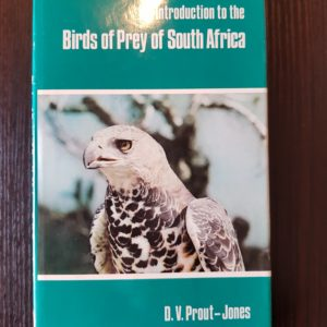 birds-prey-south-africa-prout-jones