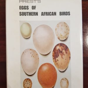 priest-eggs-southern-african-birds