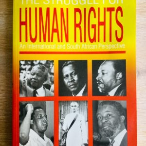 The_Struggle_for_Human_Rights_Lorenzo_Togni