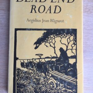 Dead_End_Road_Aegidius_Jean_Blignaut